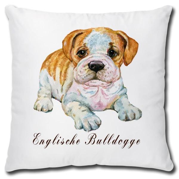 Englische Buldogge Hund, Kissen 40x40 cm
