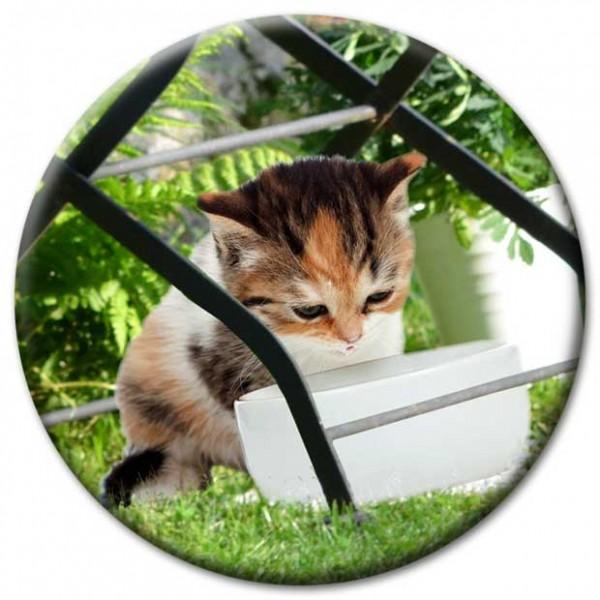 Magnet Katze - Katze unterm Gartenstuhl - Ø 5 cm