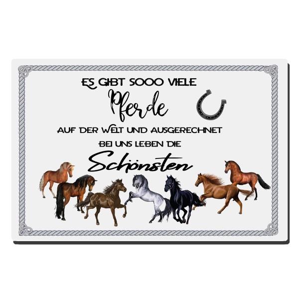 Es gibt so viele Pferde, Blechschild 20x30 cm