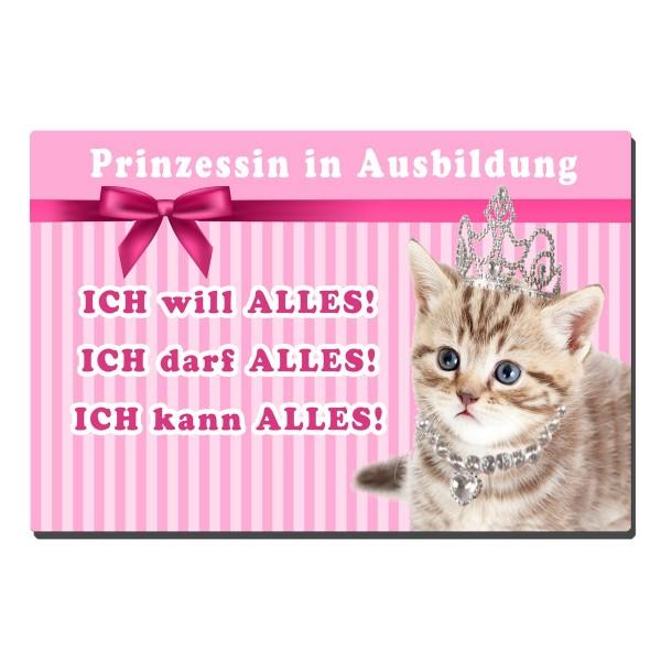 Katze Prinzessin Ausbildung, Blechschild 20x30 cm