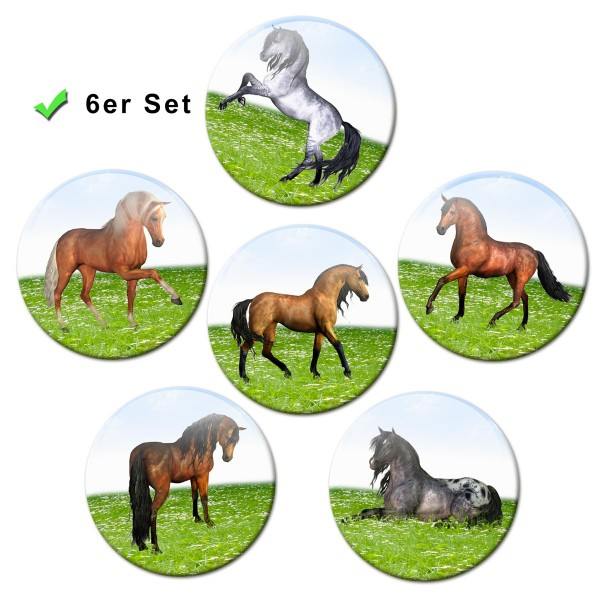 Pferde auf der Wiese, Kühlschrankmagnete 6er-Set Ø 5 cm