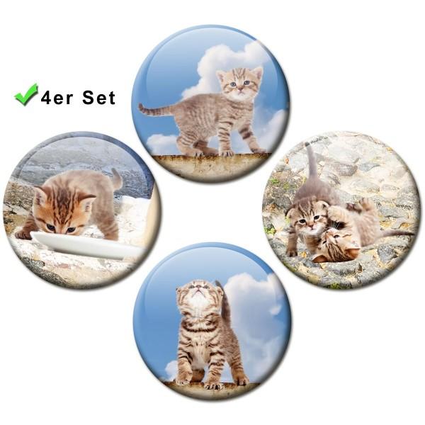 Magnete 4er-Set Katzen-Siesta - Ø 5 cm