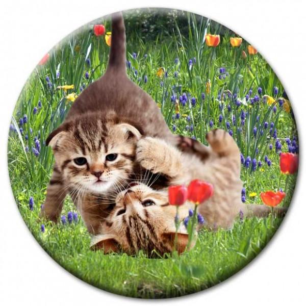 Magnet Katze - Katzen in der Gartenwiese - Ø 5 cm