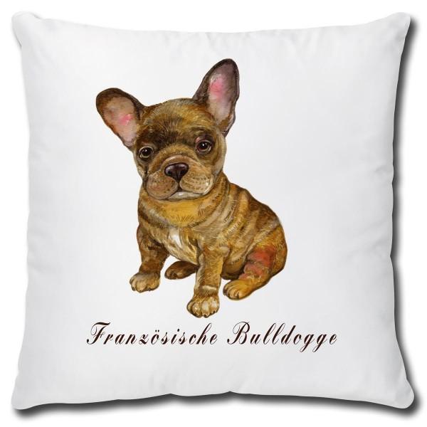 Französische Bulldogge Hund, Kissen 40x40 cm