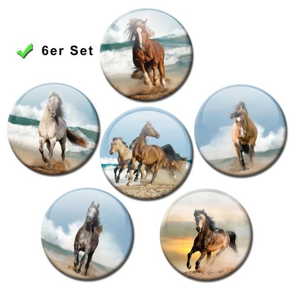 Pferde am Meer, Kühlschrankmagnete 6er-Set Ø 5 cm