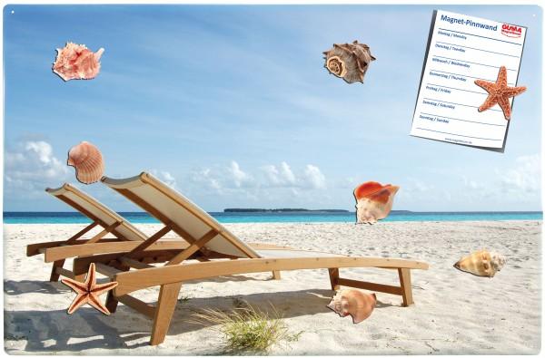 Magnettafel 60 x 40 cm Strand Liegestuhl inkl. 8 Magnete Muscheln und Seesterne