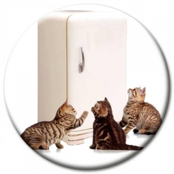 Magnet Katze - Katzen am Kühlschrank - Ø 5 cm