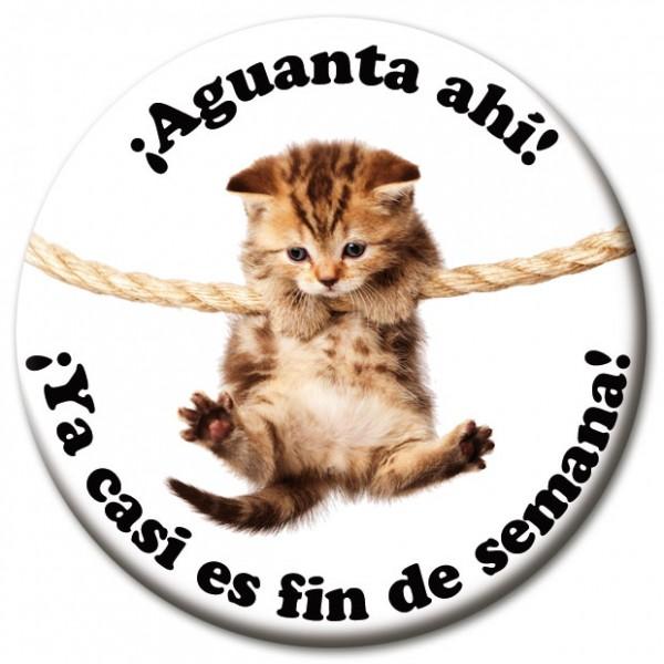"Magnet Fun & Motivation Katze ""¡Aguanta ahí!"" - Ø 5 cm"