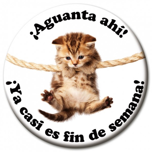 "Magnet Fun & Motivation Katze ""¡Aguanta ahí!"" - Ø 5 cm"