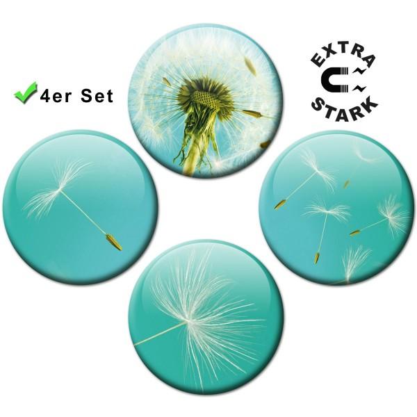 Magnete für Glasmagnettafel 4er-Set Pusteblume - Ø 5 cm