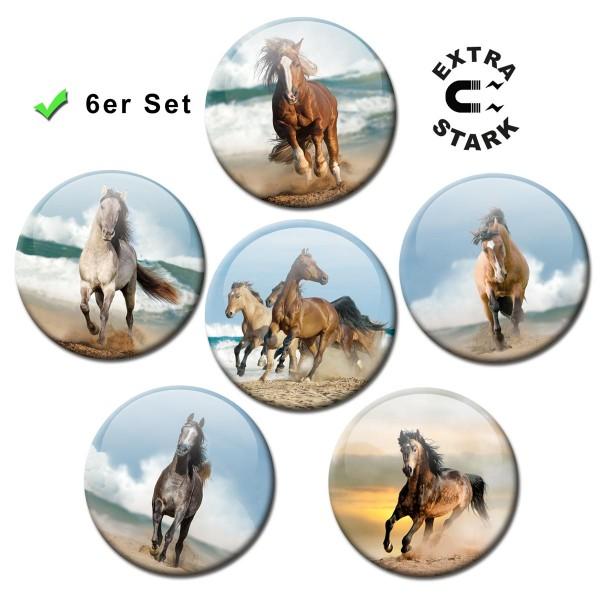 Pferde am Meer, Glasmagnettafel Magnete 6er-Set Ø 5 cm