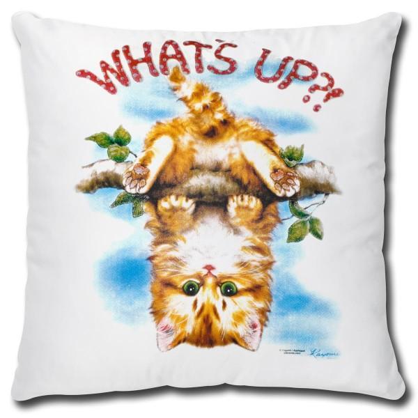 Katze What's Up, Kissen 40x40 cm