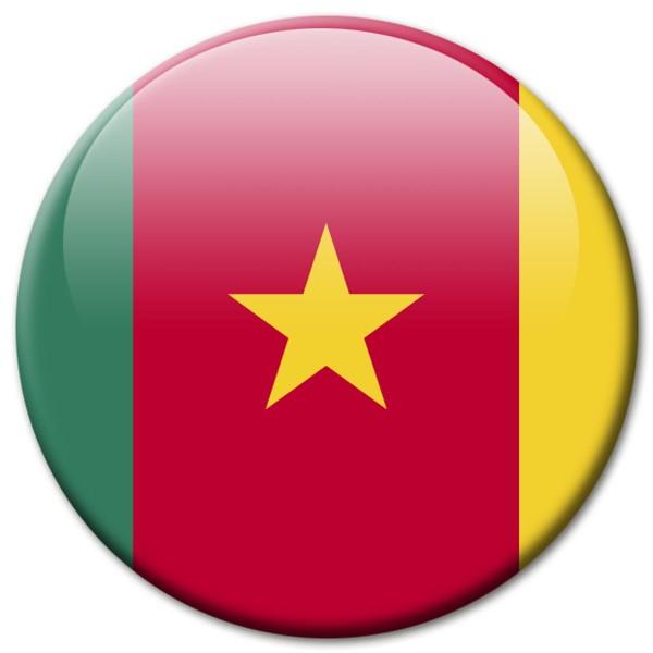 Flagge Kamerun, Magnet 5 cm