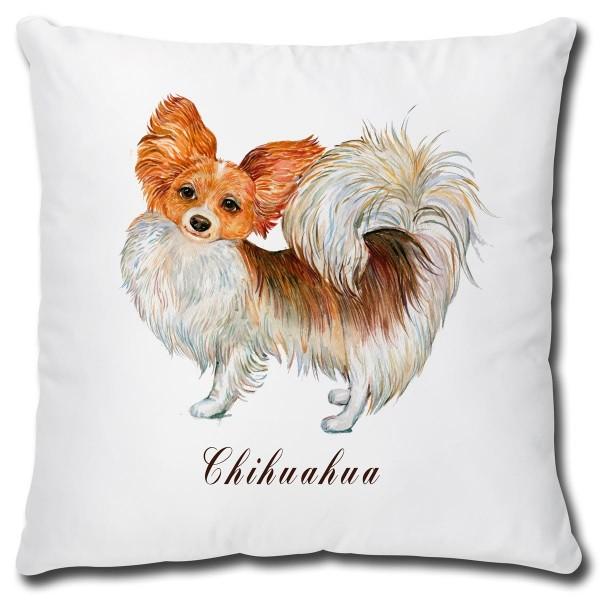 Chihuahua Hund, Kissen 40x40 cm