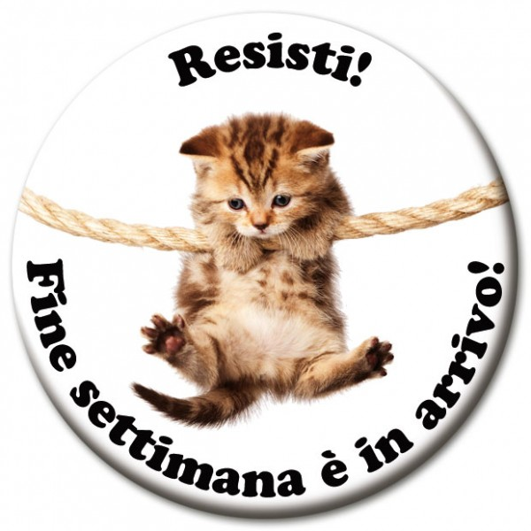 "Magnet Fun & Motivation Katze ""Resisti!"" - Ø 5 cm"