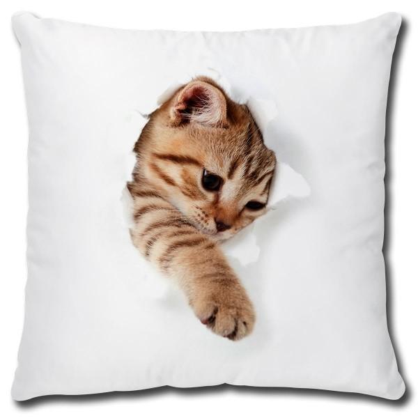 Katze bricht durch, Kissen 40x40 cm