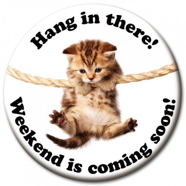 """Magnet Fun & Motivation Katze """"Hang in there!"""" - Ø 5 cm"""