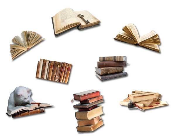 Magnete 8er-Set Fliegende Bücher