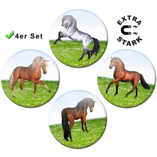 Magnete für Glasmagnettafel 4er-Set Pferde auf der Wiese - Ø 5 cm