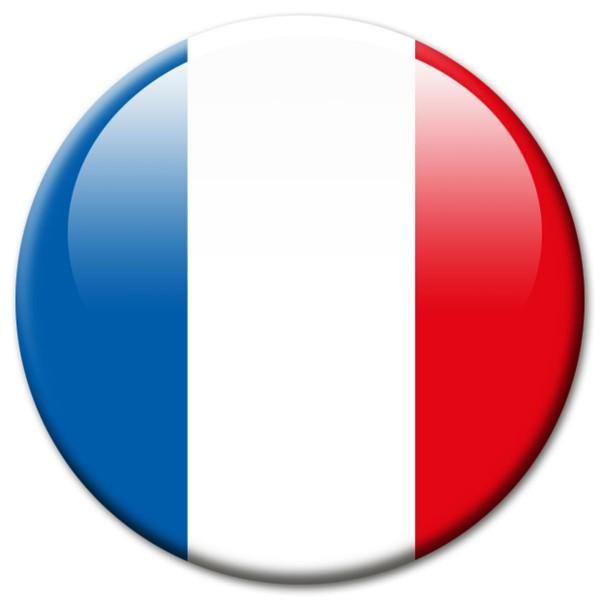 Flagge Frankreich Magnet 5 cm