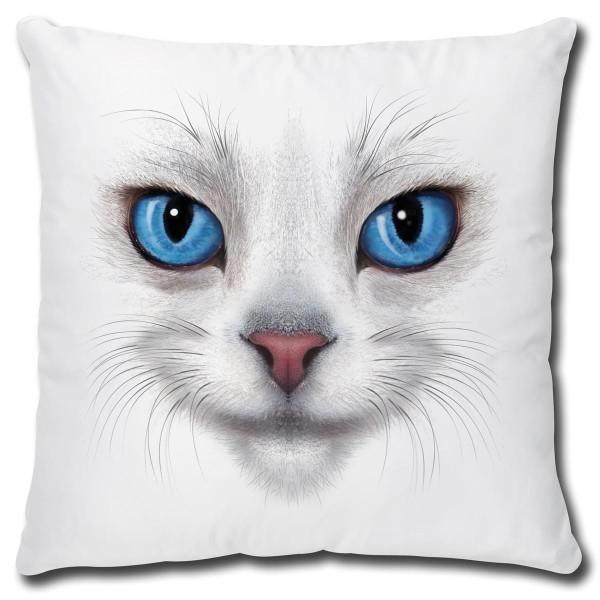 Katze White Cat Blue Eyes, Kissen 40x40 cm
