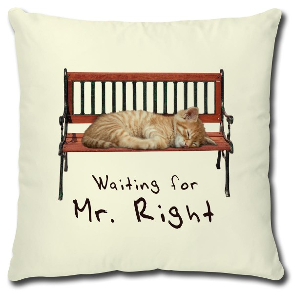 Katze Waiting for Mr. Right, Kissen 40x40 cm Natur