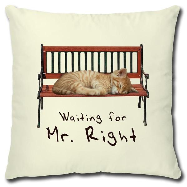 Katze Waiting for Mr. Right, Kissen 40x40 cm Natur