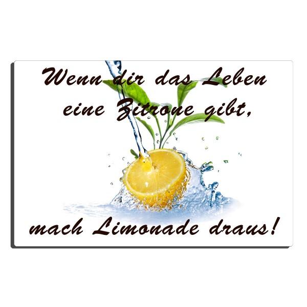 Zitronenlimonade, Blechschild 20x30 cm