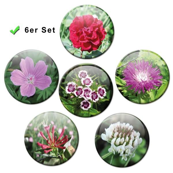 Blütenzauber, Kühlschrankmagnete 6er-Set Ø 5 cm