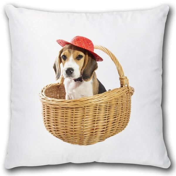 Hund im Korb, Kissen 40x40 cm